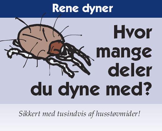 Rene dyner med dynevask hos dit renseri i Kalundborg